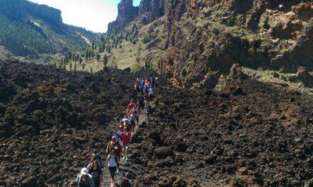 Visita de 3ºESO al Parque Nacional del Teide