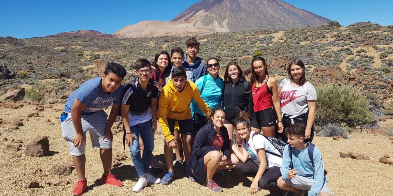 Excursión al Parque Nacional del Teide