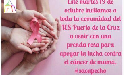 Martes 19 de octubre: Día Internacional de la Lucha contra el Cáncer de Mama