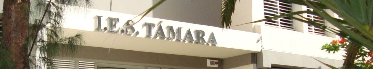 IES TÁMARA