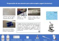 Ficha de preparación de muestras: observación de las bacterias del yogurt