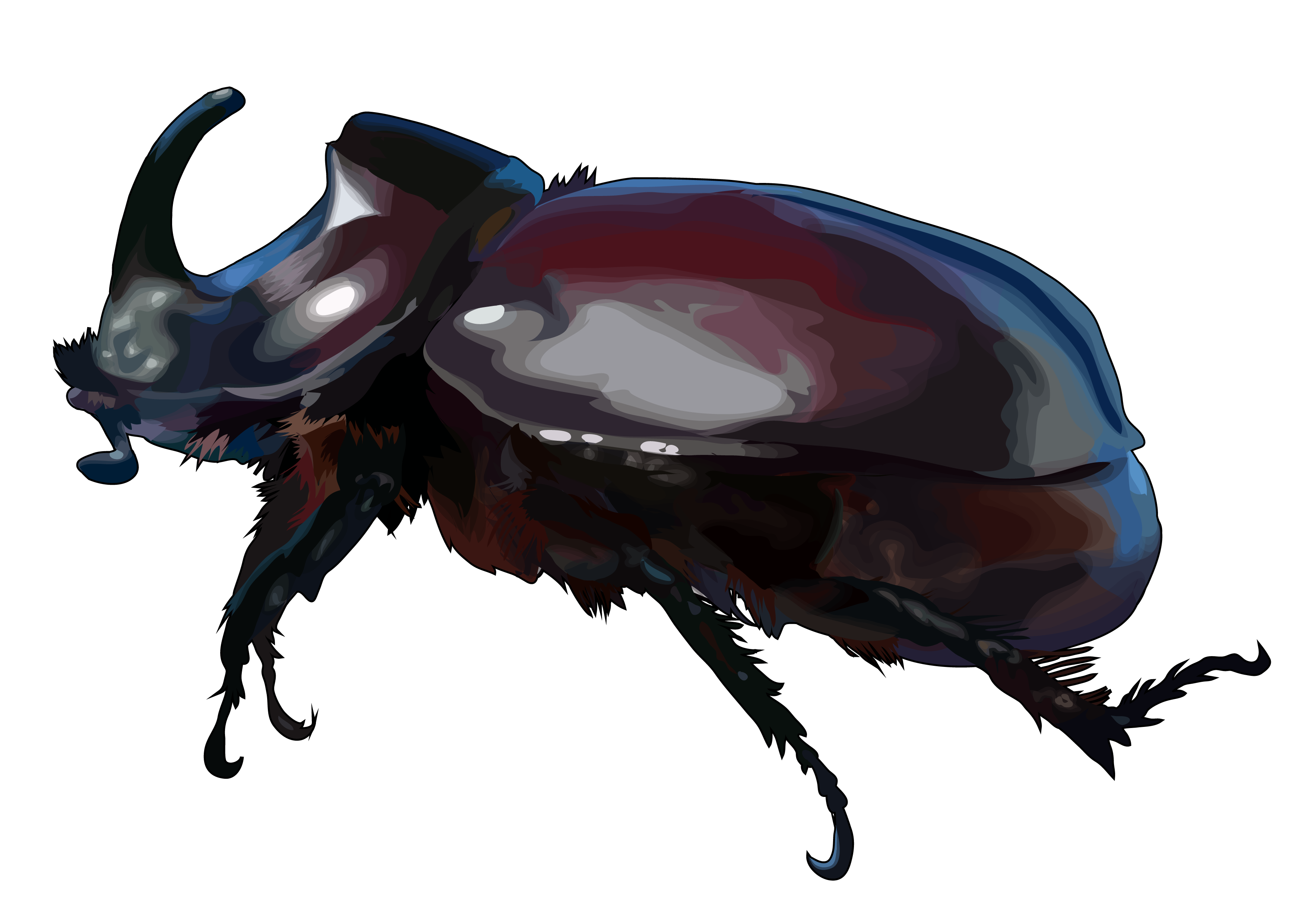 HTML5: escarabajo rinoceronte » Recursos educativos digitales