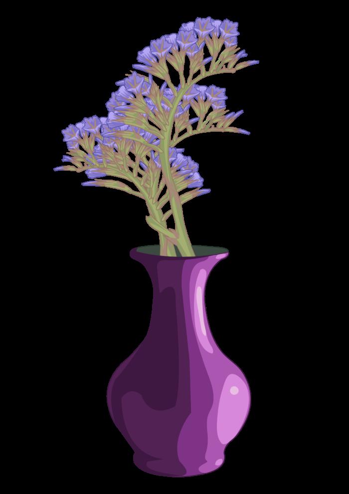 siempreviva planta ornamental canal del rea de