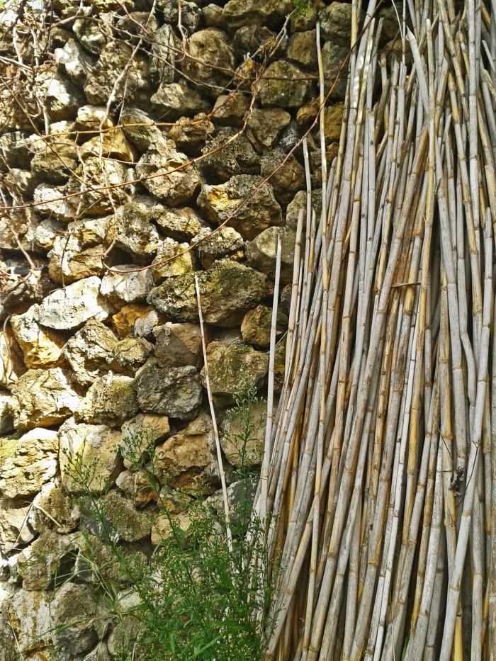 Muro de piedra y cañas