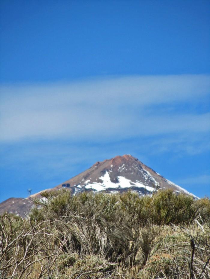Retama y Pico del Teide
