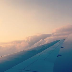 plane wing2