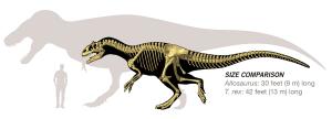 allosaurus-size