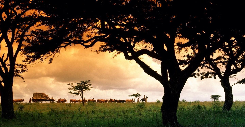 memorias-de-africa