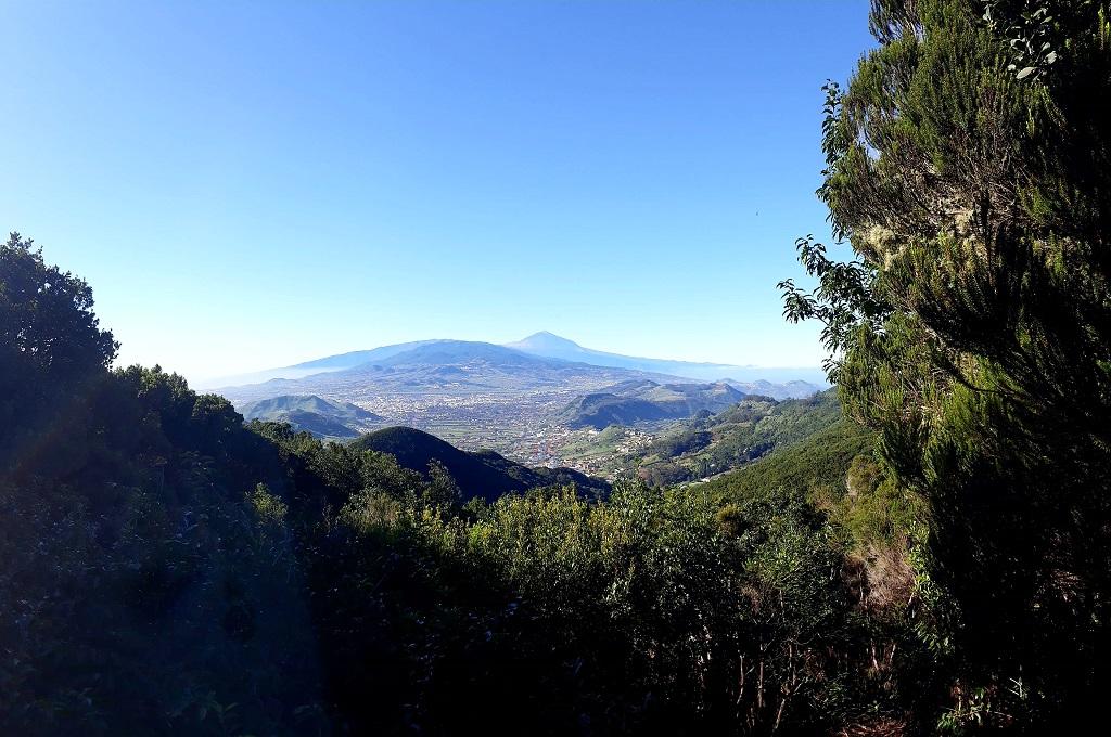 Imagen de archivo de monte en Tenerife