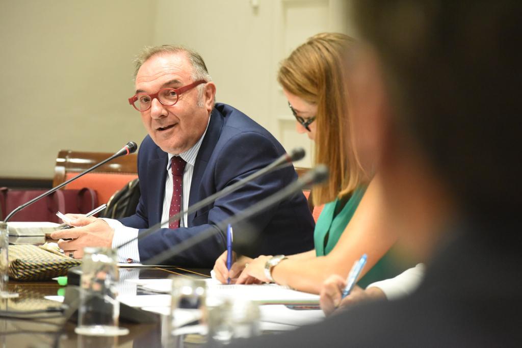 Baltar, en una comisión parlamentaria