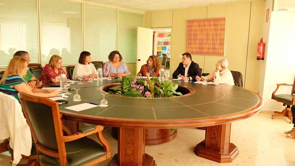 Cristina Valido presidió hoy el Consejo para la Promoción de la Accesibilidad y Supresión de Barreras