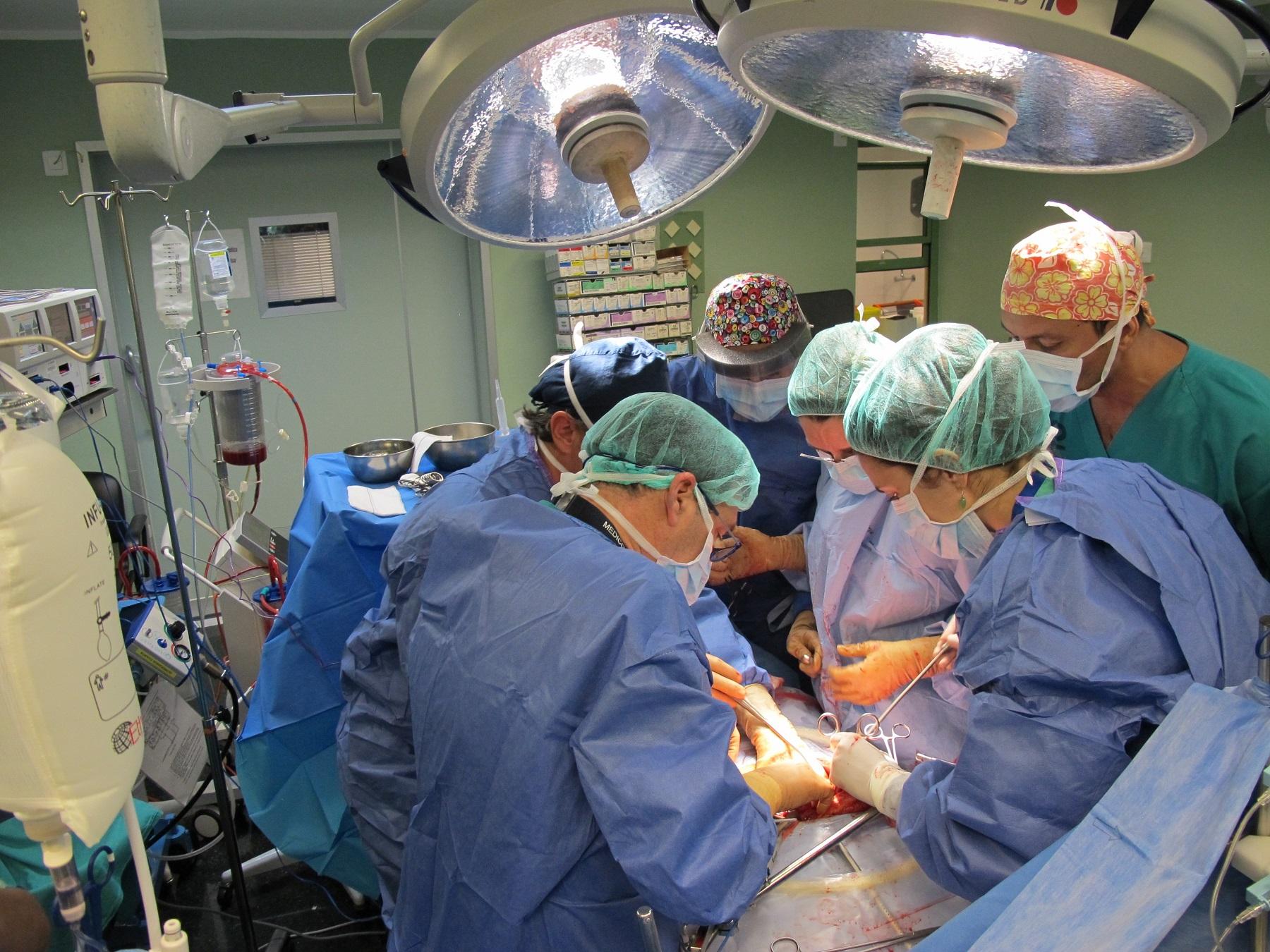 Equipo médico realizando un trasplante.