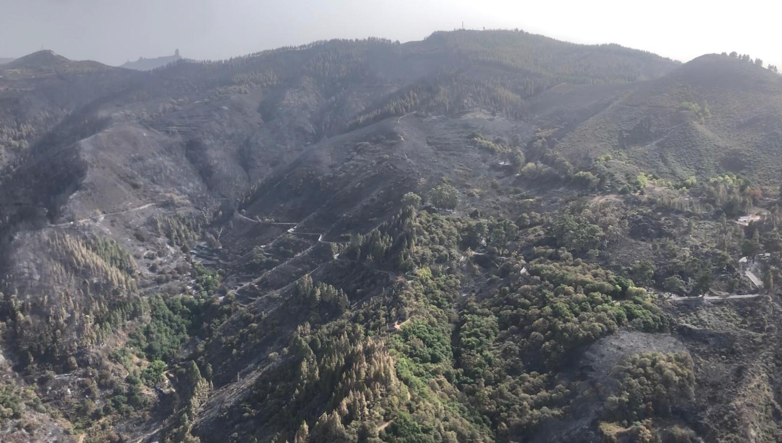 Incendio Gran Canaria controlado y nivel 1