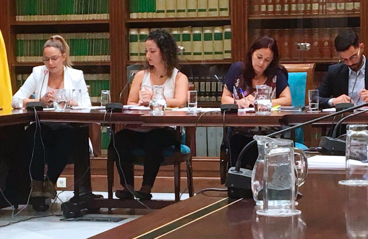 La consejera de Derechos Sociales, Igualdad, Diversidad y Juventud, Noemí Santana, en comisión de Servicios Sociales
