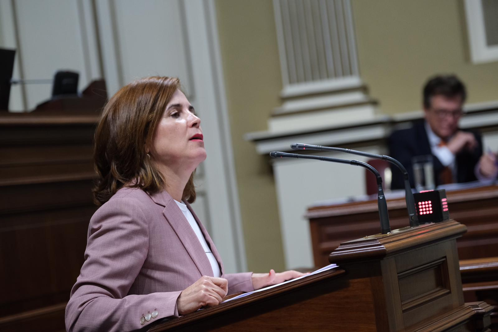 Teresa Cruz en el Parlamento