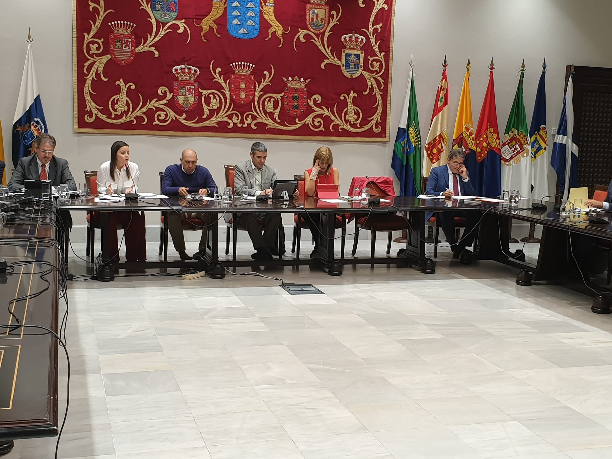 Imagen de la consejera de Turismo en Comisión Prespuestaria