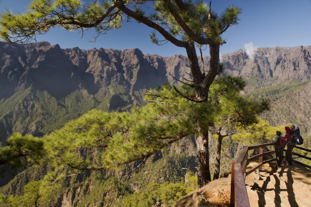 Las ayudas van destinadas a apoyar productos turísticos en todos los rincones de Canarias