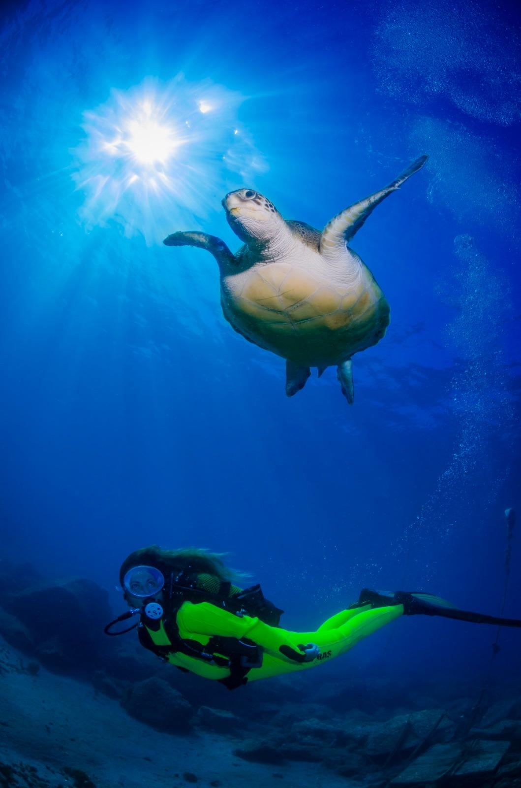 Canarias acude a la Mediterranean Diving Show de Barcelona.