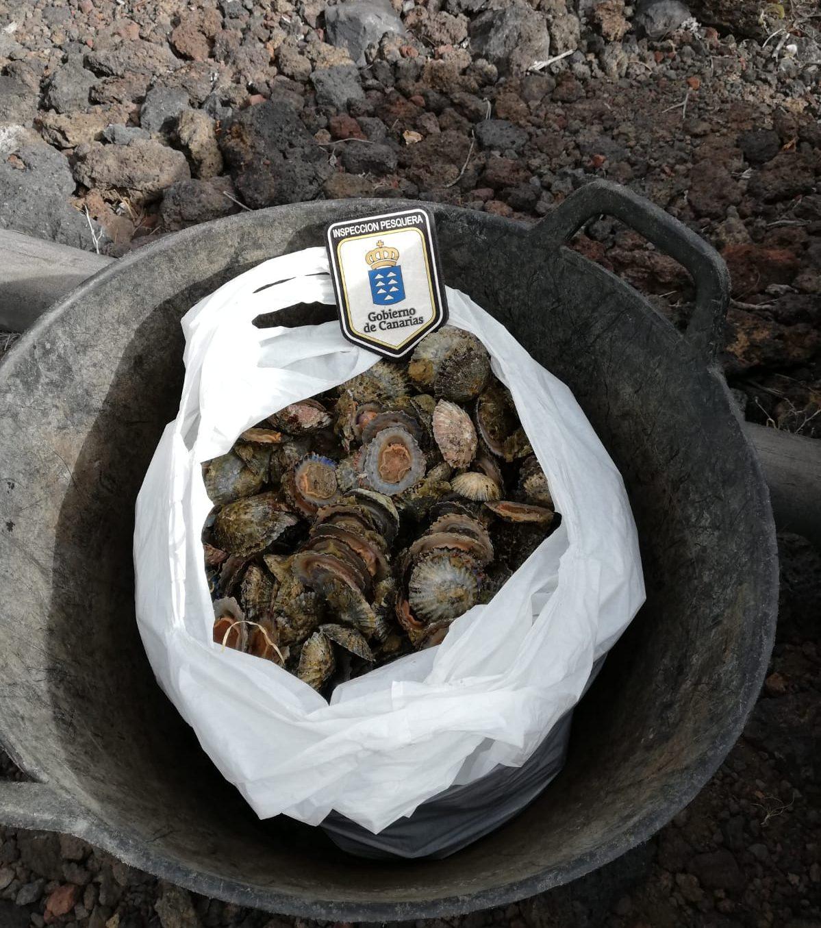 Agentes de Inspección Pesquera realizan más de 180 controles desde la autorización de la pesca recreativa