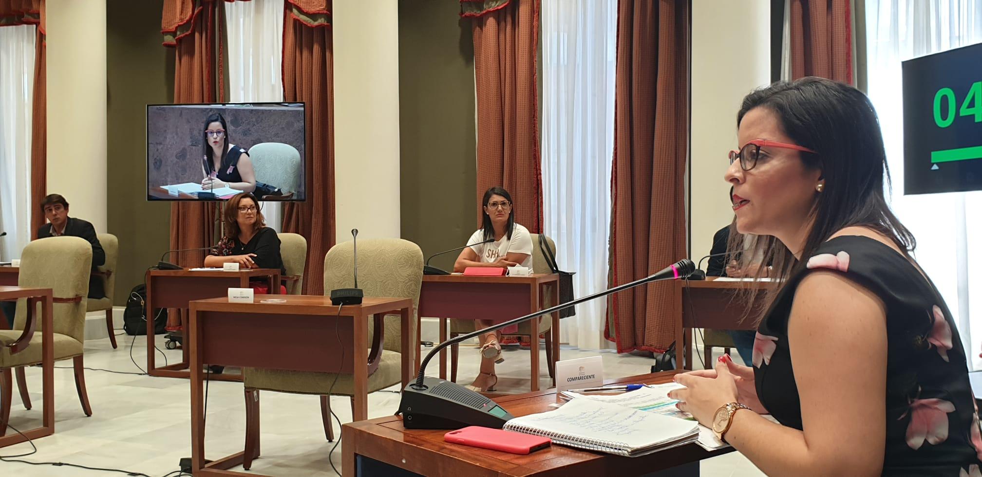 La consejera Yaiza Castilla en Comisión parlamentaria.