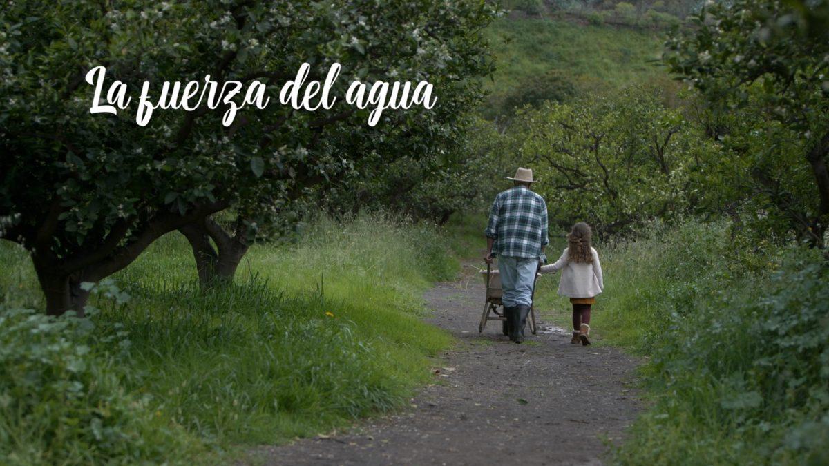 Imagen del video de la campaña La Fuerza del Agua