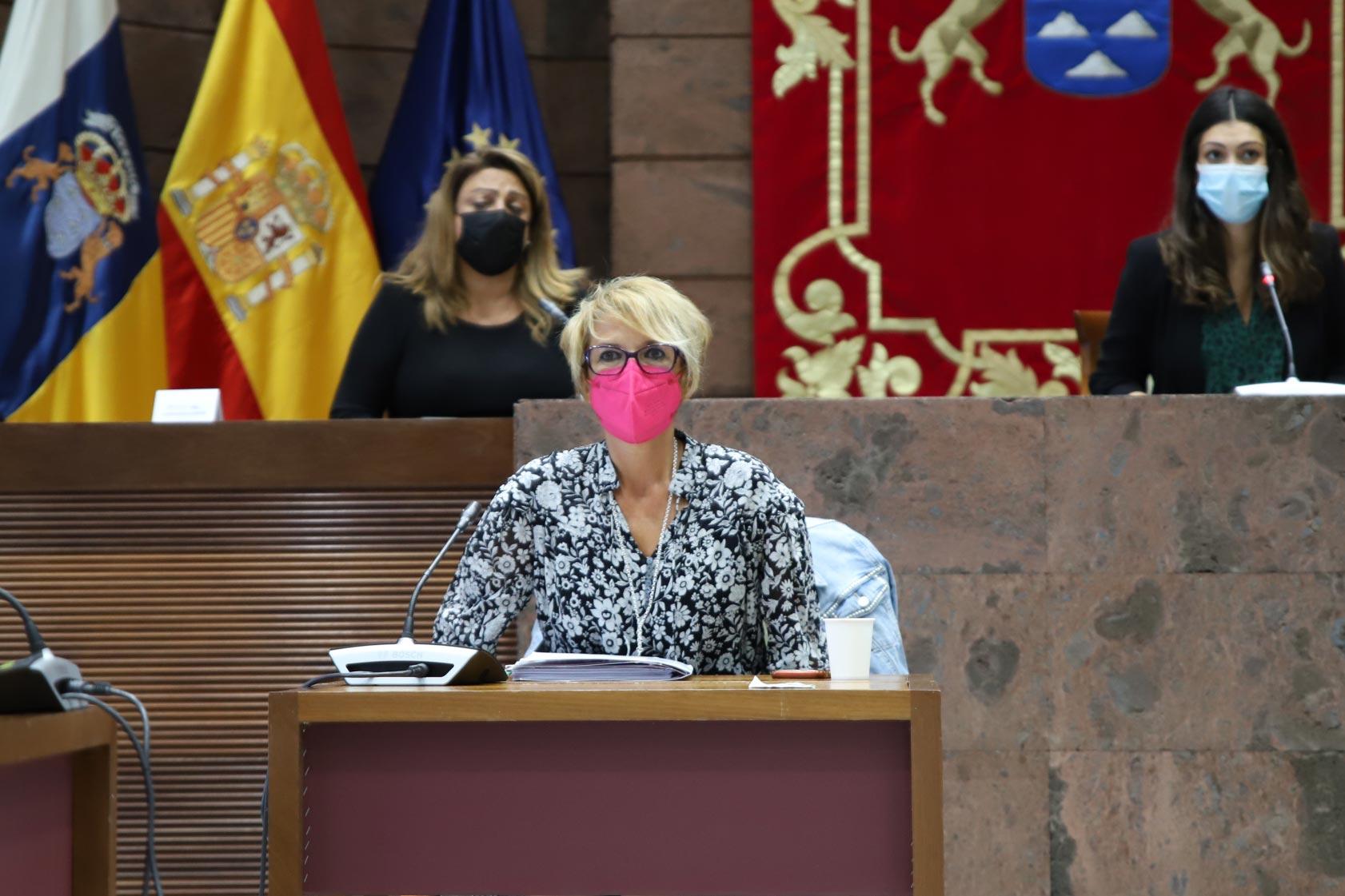 Elena Máñez en el Parlamento de Canarias.
