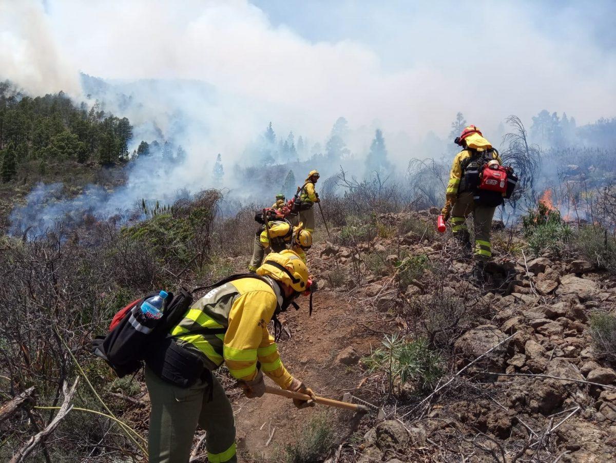 Actuaciones contra el incendio de Arico