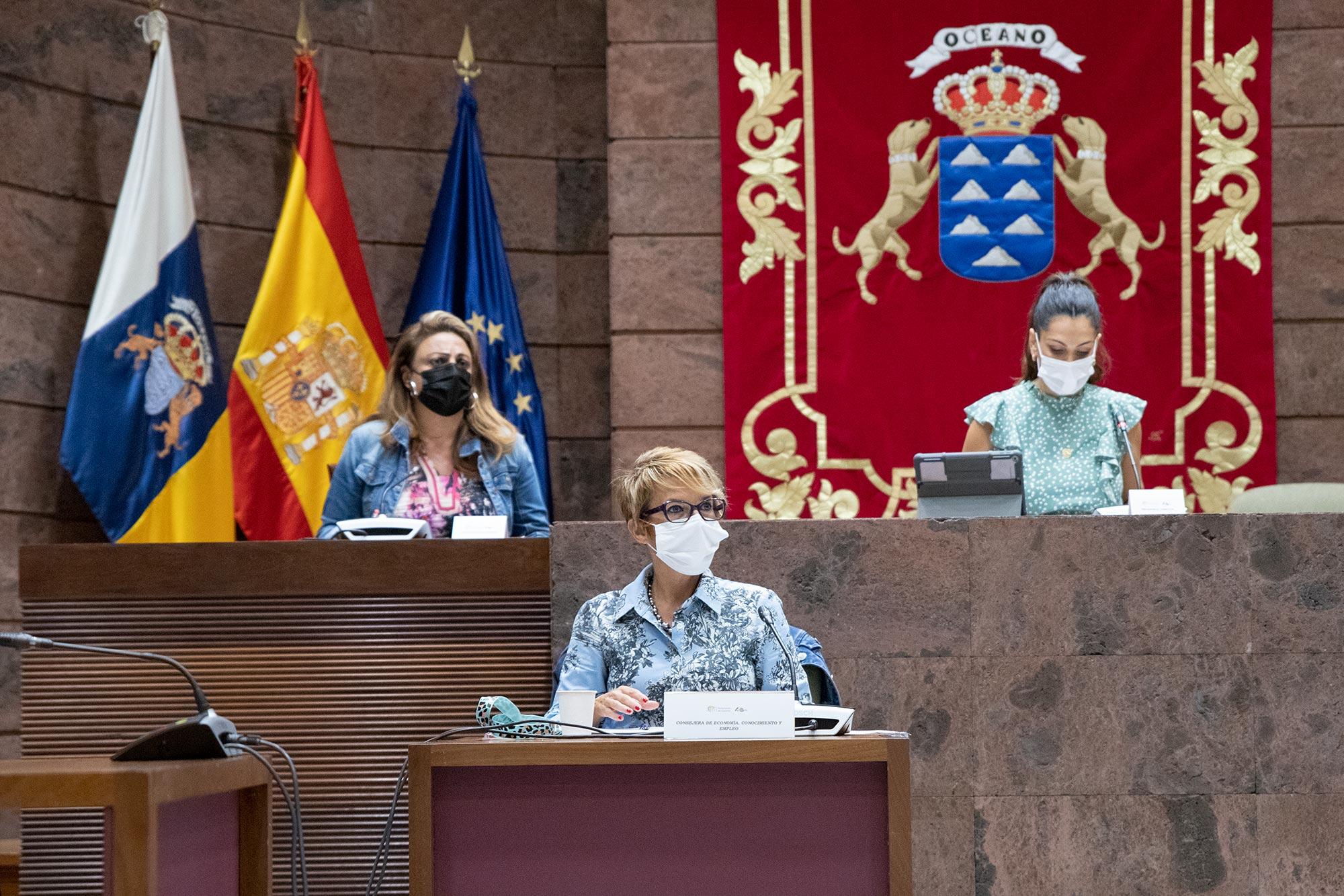 Elena Máéz, en el Parlamento de Canarias